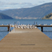 Photo of numerous birds on a wooden dock, a body of water and mountains in the background.